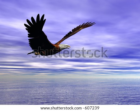 Accipitridae, the american bald eagle flying over the ocean, clear blue sky and puffy clouds.  3D render. - stock photo
