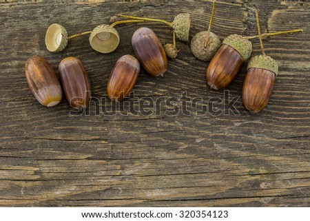 Acorns on a rustic wooden background - stock photo