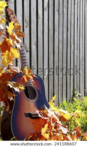 acoustic guitar between fall leaves - stock photo
