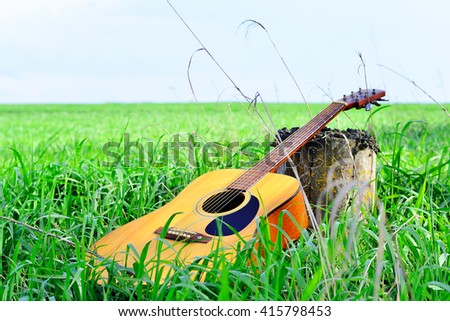 Acoustic guitar on the grass near the tree stump - stock photo