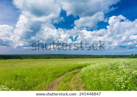 Acres Wild Summer Lawn  - stock photo