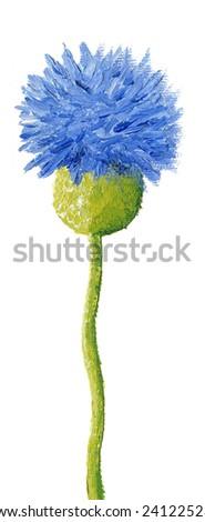 Acrylic illustration of blue cornflower - stock photo