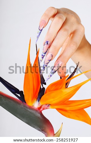 Acrylic manicured beautiful nails - stock photo
