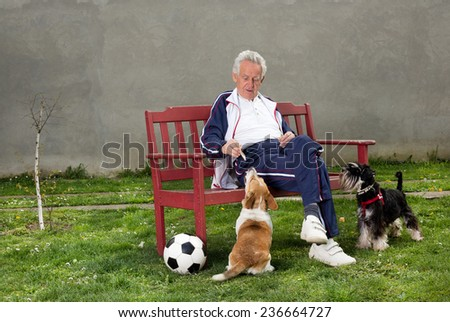 Active senior man with dogs resting on bench - stock photo