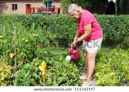 Active senior woman watering the plants in her garden - stock photo