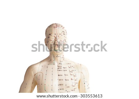 acupuncture model of human, isolated on white - stock photo