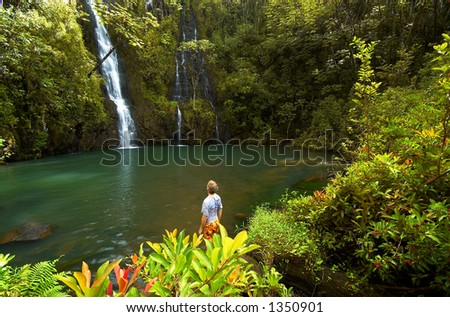 Admirer of a secret fall on Kauai Hawaii. More with keyword Series001. - stock photo