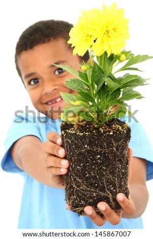 Adorable Black Boy Child Holding Plant - stock photo