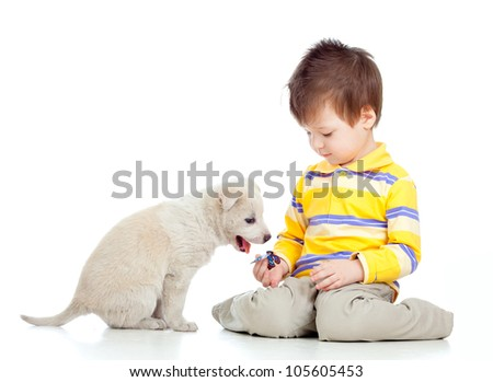 adorable kid boy playing with a puppy - stock photo