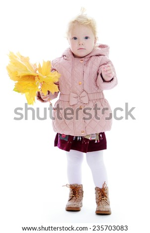 Adorable little girl holding a bouquet of yellow maple leaves.White background, isolated photo. - stock photo