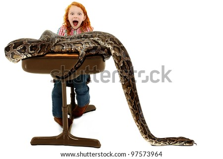 Adorable scared elementary student screaming as an escaped python slithers across her desk during a school show and tell escape. - stock photo