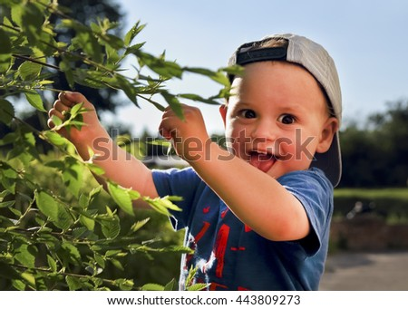 adorable surprised baby boy outdoors. toddler boy explores the tree and leaves.  summertime. - stock photo