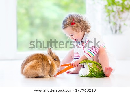 Adorable toddler girl with beautiful curly hair wearing a white dress playing with a real bunny in a sunny living room with a big garden view window sitting on the floor - stock photo