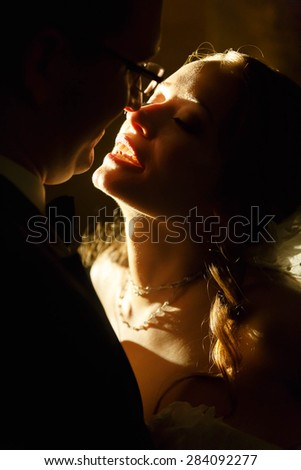 adorning gentle elegant fashion groom and bride is hugging  on the background night vienna - stock photo