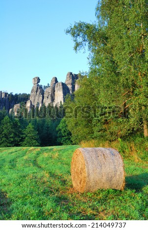 Adrspach sandstone towers with a bale of hay - stock photo
