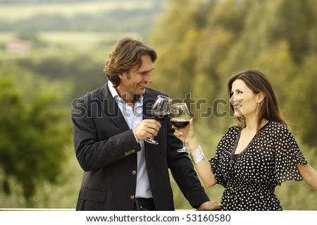 Adult couple toasting - stock photo