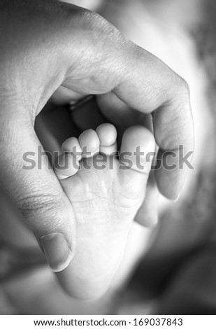 Adult hand holding baby's foot - stock photo
