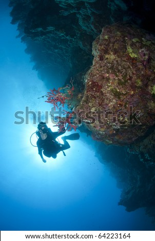 Adult male scuba diver photographing a tropical coral reef. Shark observatory, Ras Mohamed National Park, Red Sea, Egypt. - stock photo