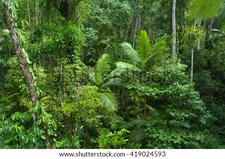 Aerial landscape view of Daintree National Park canopy in the tropical north of Queensland,  Australia - stock photo