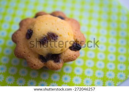 Aerial view delicious cupcake with raisins on blue green background  Closeup of butter pastry cookie biscuit sponge cake with sultanas on napkin with flower pattern, soft natural light - stock photo