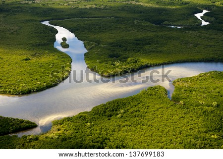 Aerial view of a pristine forked river winding through lush coastal wetlands - stock photo