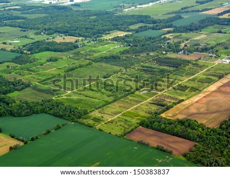 aerial view of a tree farm in Southern Ontario, Canada - stock photo