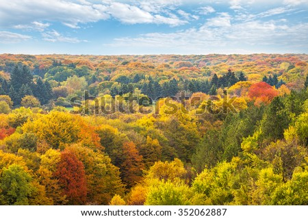 Aerial view of autumn forest. - stock photo