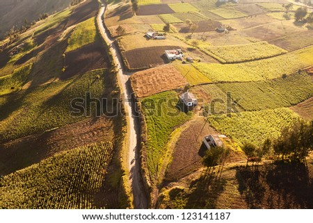 Aerial view of cultivated land, low altitude - stock photo
