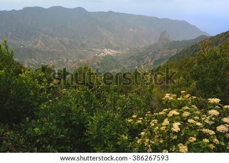 Aerial view of Garajonay National Park, La Gomera, Spain - stock photo