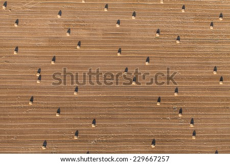 aerial view of harvest field and hay bales - stock photo