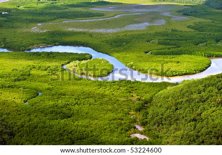 Aerial view of lush coastal wetlands - stock photo