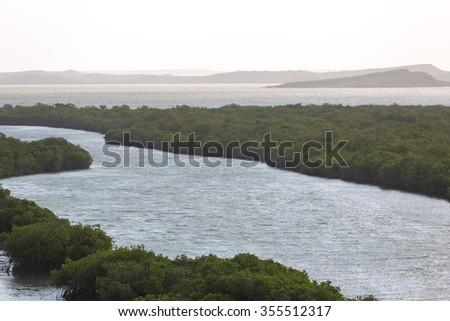 Aerial view of mangroves and coastline near Punta Gallinas in La Guajira, Colombia 2014. - stock photo