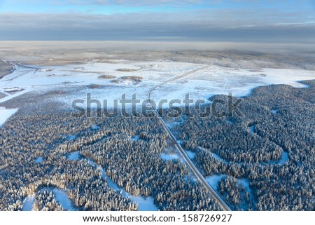 Aerial view of pine forest during a winter day.  - stock photo