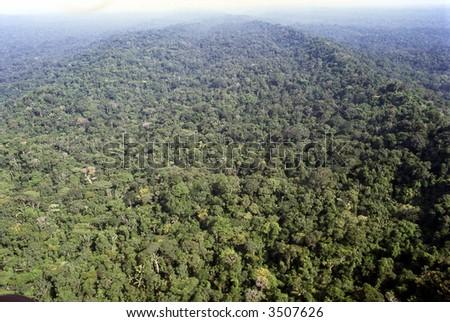 Aerial view of rainforest in Ecuadorian Amazon - stock photo