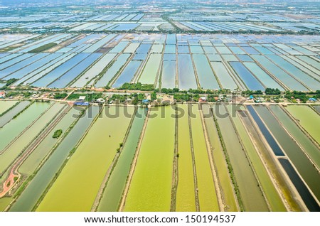 Aerial view of rice field terraces in Thailand - stock photo