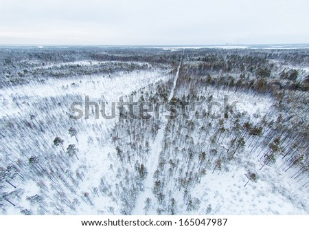 Aerial view of snow-covered forest in Siberia - stock photo