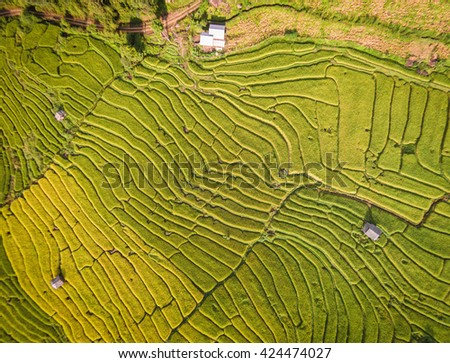 Aerial view of Terraced Rice Field, Thailand - stock photo