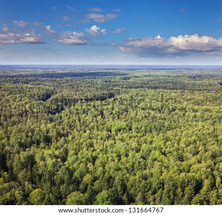 Aerial view of the forest under clouds during the summer. - stock photo