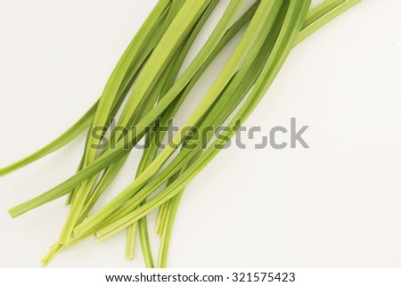 Aerial view of the long green pandan leaves on white background. Its strong sweet fragrance is often used to scent and flavor food. Have medicinal benefits and being used to repel insect pests. - stock photo