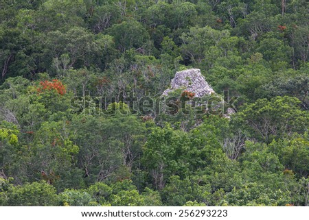 Aerial view of the top of a Mayan pyramid reacing forest canopy at Coba - stock photo