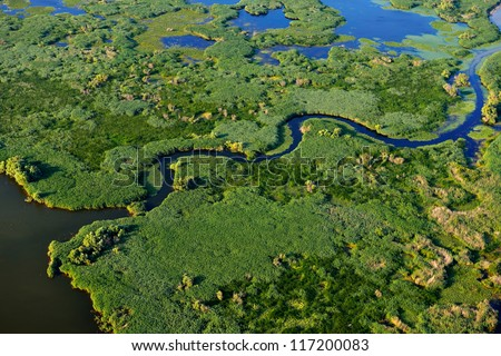 aerial view of wetland - stock photo