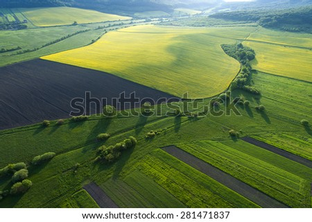 Aerial view on yellow fields - stock photo