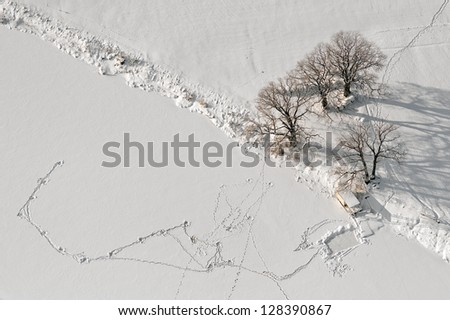 aerial view over the coast of lake - stock photo