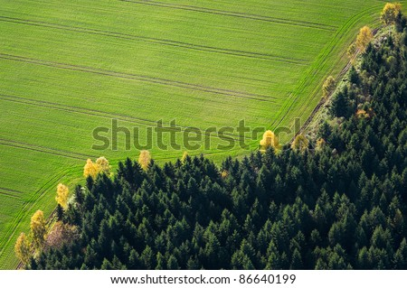 Aerial view over the green field and forest - stock photo