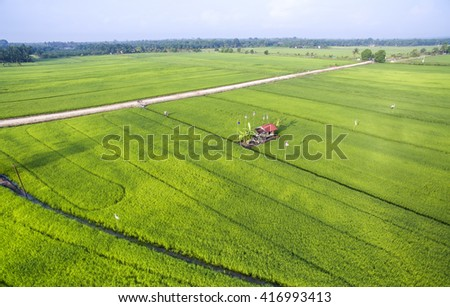 aerial view paddy field growth up at malacca malaysia - stock photo