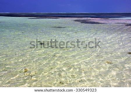 africa coastline froth foam  in the  blue lagoon relax  of zanzibar  - stock photo