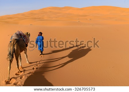 Africa, Morocco - view of Erg Chebbi Dunes - Camel excursion in sahara desert  - stock photo