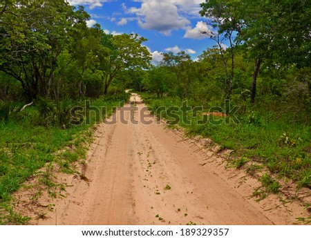 Africa, Mozambique. The road through the jungle. - stock photo