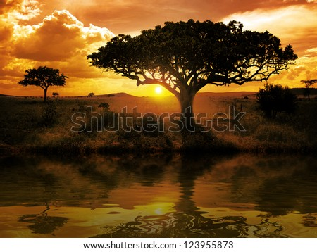 Africa sunset trees near a river - stock photo