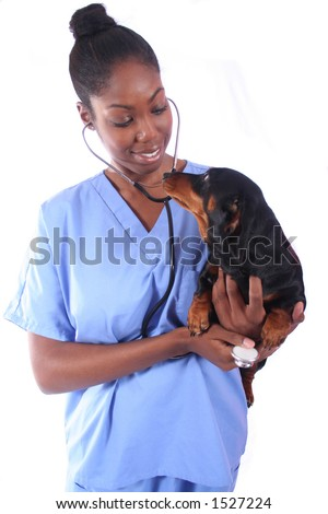 African American Vet and Dog - stock photo